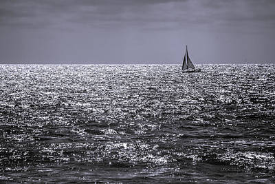 Sailboat Off The Coast At San Diego Poster
