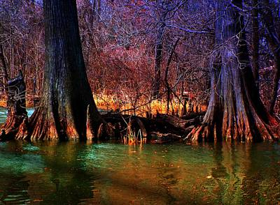 Late Evening In Reelfoot Poster by Julie Dant