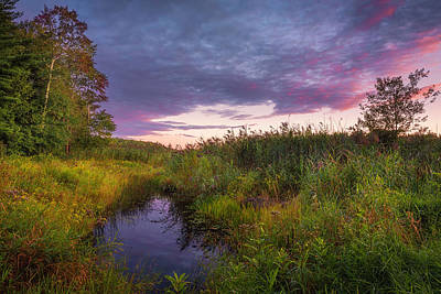 Late Summer Color At Blue Marsh Poster