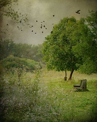 Late Summer Daydream By The Old Tree Poster by Gothicrow Images