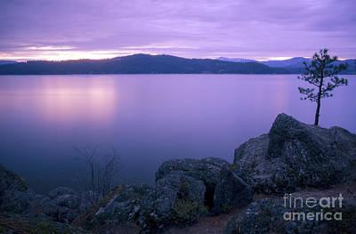 Lavendar Twilight Poster by Idaho Scenic Images Linda Lantzy