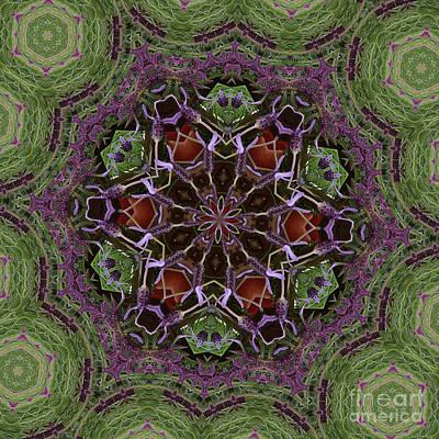 Lavender Mandala 2 Poster