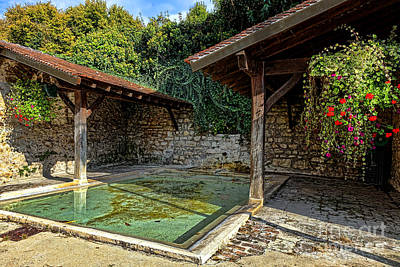 Lavoir With Flowers Poster by Olivier Le Queinec