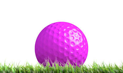 Lawn Hockey Ball Resting On Grass Poster