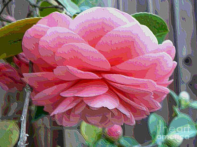 Layers Of Pink Camellia - Digital Art Poster by Carol Groenen
