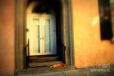 Lazy Afternoon At Kings Street In Charleston Sc Poster by Susanne Van Hulst