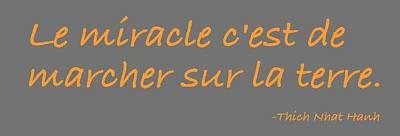 Le Miracle Poster by Julie Niemela