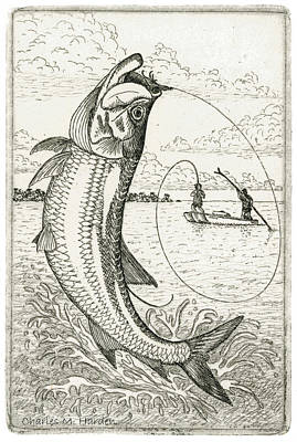 Leaping Tarpon Poster by Charles Harden