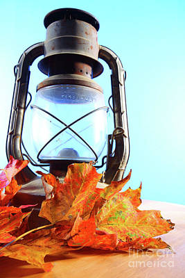 Leaves And Lantern 3 Poster