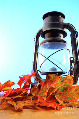 Leaves And Lantern 4 Poster