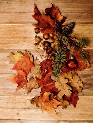 Leaves And Nuts And Red Ornament Poster by Rebecca Cozart