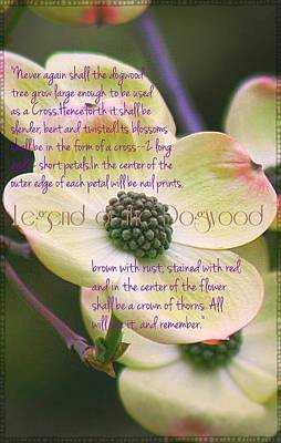 Legend Of The Dogwood Poster by ARTography by Pamela Smale Williams