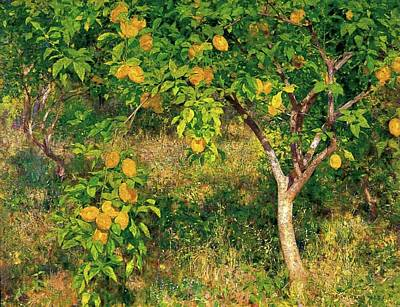 Poster featuring the painting Lemon Tree by Henry Scott Tuke