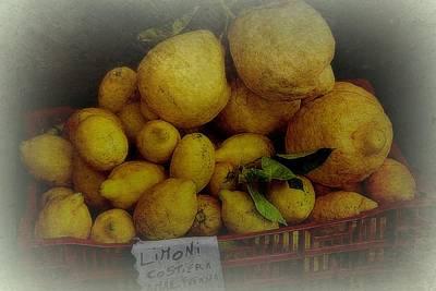 Lemons In Red Basket Poster