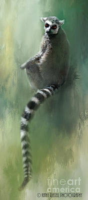 Lemur Catching Rays Poster by Kathy Russell