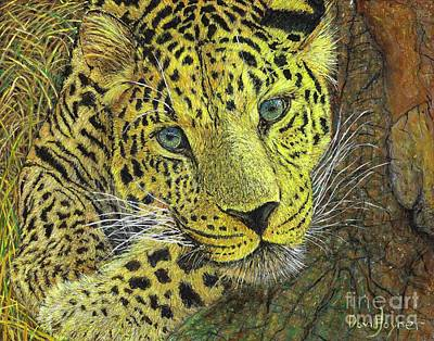 Leopard Gaze Poster