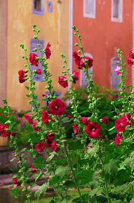 Les Fleurs Rouge Poster