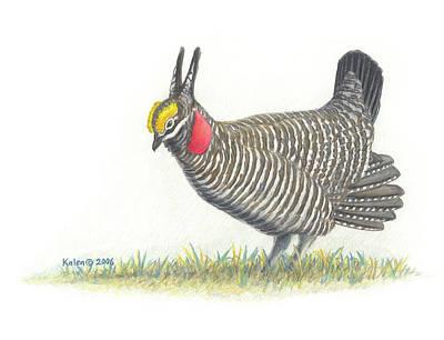 Lesser Prairie-chicken Poster by Kalen Malueg
