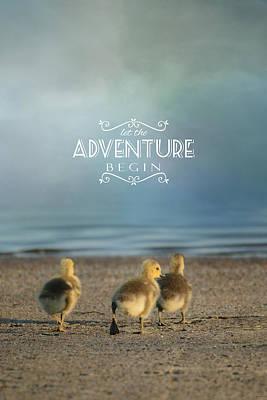 Let The Adventure Begin Poster by Jai Johnson