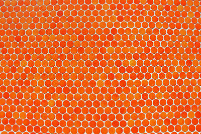 Let's Polka Dot Poster by Iryna Goodall