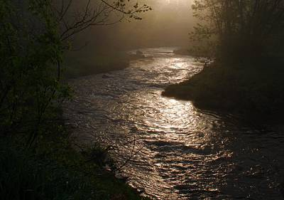 Lewis Creek In Morning Fog Poster by Bill Driscoll