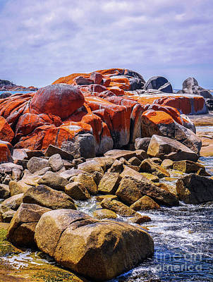 Lichen Covered Rocks Poster