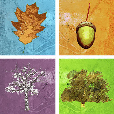Life Of An Oak Tree Poster