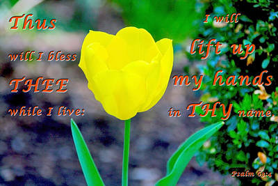 Lift Up My Hands Poster by Terry Wallace