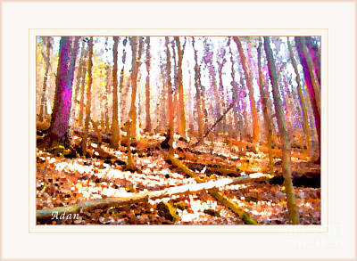 Poster featuring the photograph Light Between The Trees by Felipe Adan Lerma