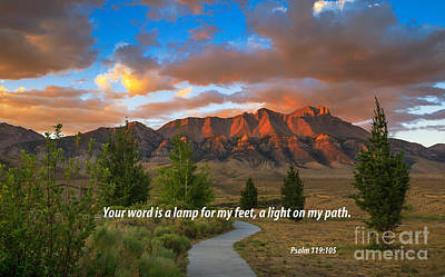 Light On My Path Poster by Robert Bales