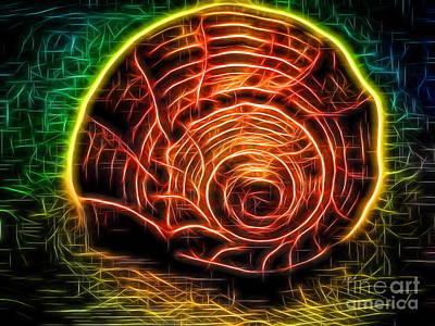 Lightening Whelk Wired Poster