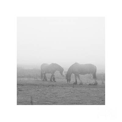 Lighter Than Black - Still Dampened And Shrouded In Mist  Poster
