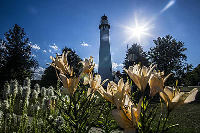 Lighthouse With A Flowery Foreground Poster by Sven Brogren