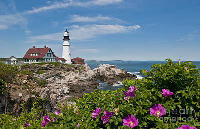 Lighthouse With Rocks On Shore Poster by Bill Bachmann and Photo Researchers