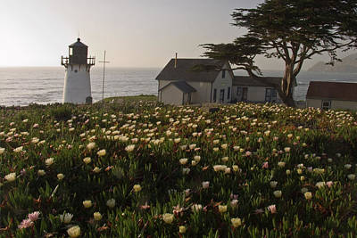 Lighthouse With Wildflowers Poster by George Oze