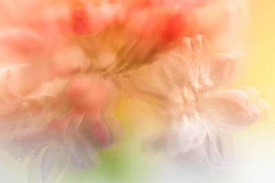 Lilac Floral Abstract 1. Watercolors Series Poster by Jenny Rainbow