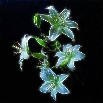 Lilies Poster by Sandy Keeton