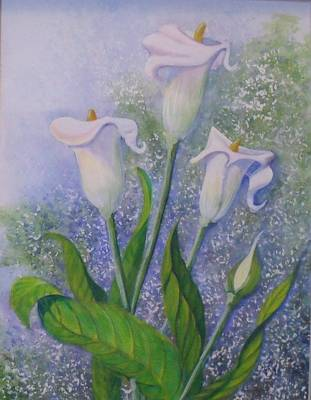 Lillies  A Poster by Helen Thomas