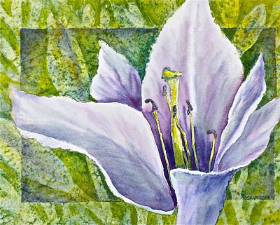 Lily In Purple Poster by Carolyn Rosenberger