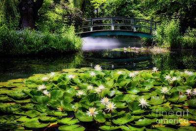 Lily Pond With A Footbridge Poster by George Oze