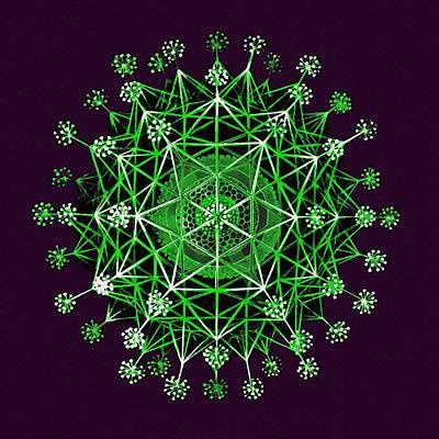 Lime Green Phaeodaria Poster by Diane Addis