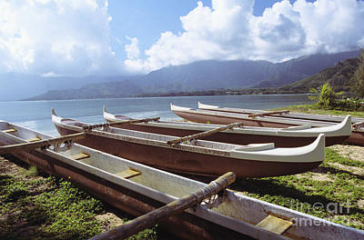 Line Of Outrigger Canoes Poster by Joss - Printscapes