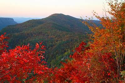 Poster featuring the photograph Linville Gorge by Kathryn Meyer