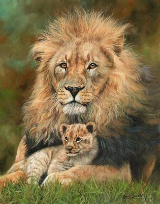 Lion And Cub Poster by David Stribbling