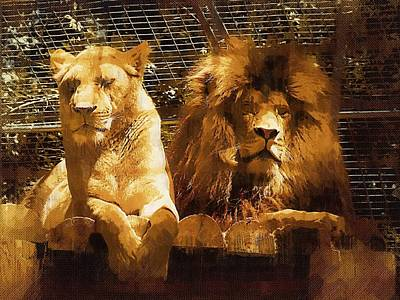 Lion And Wife Poster by Deborah MacQuarrie-Selib