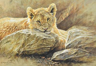 Lion Cub Study Poster