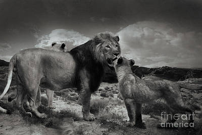 Poster featuring the photograph Lion Family by Christine Sponchia