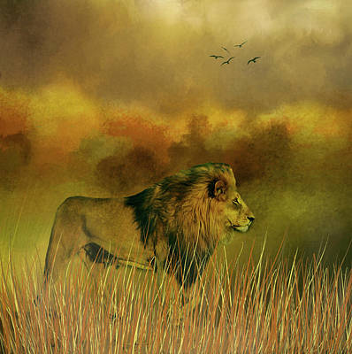 Lion In The Mist Poster by Diane Schuster
