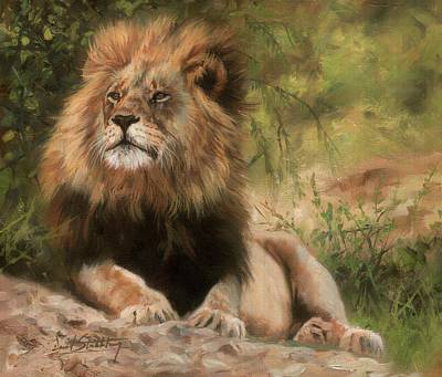 Poster featuring the painting Lion Resting by David Stribbling