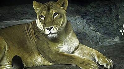 Lioness Poster by Anna J Davis